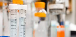 Drug Development Process Overview From Lab to Market